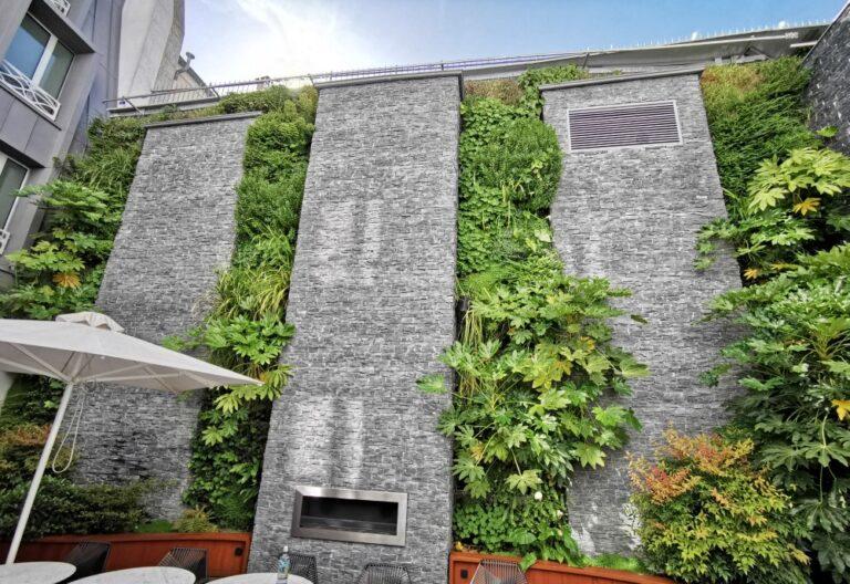 mur végétal exterieur