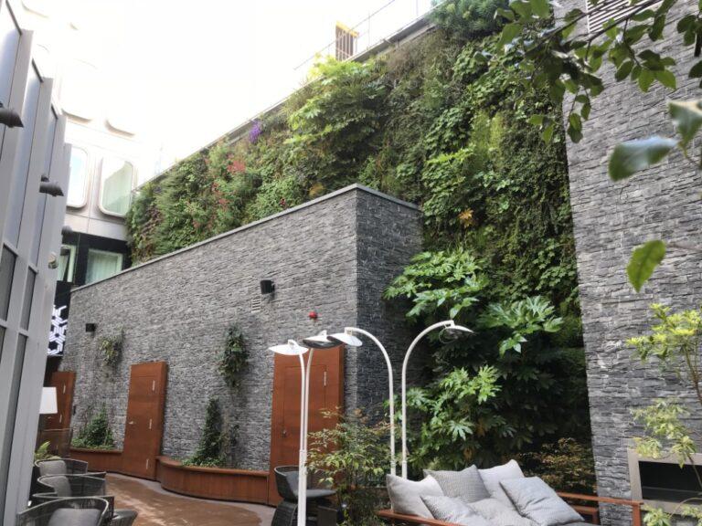 pose d'un mur végétal