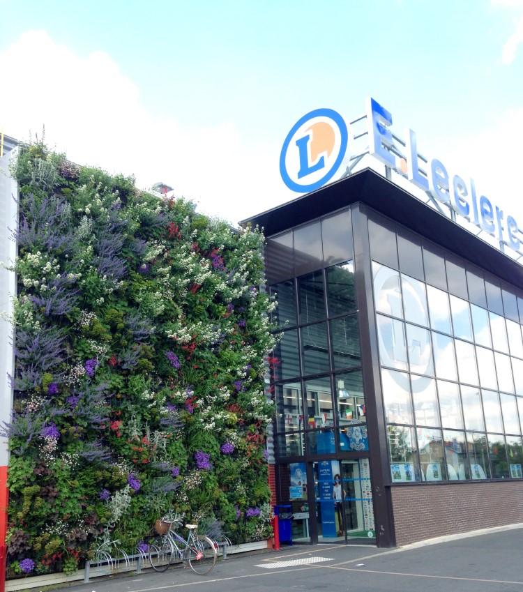 mur végétalisé fleuri au printemps
