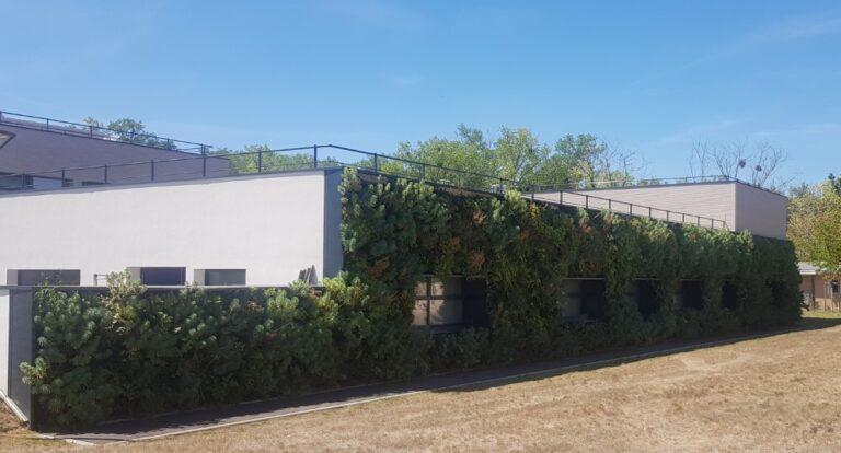 façade végétale