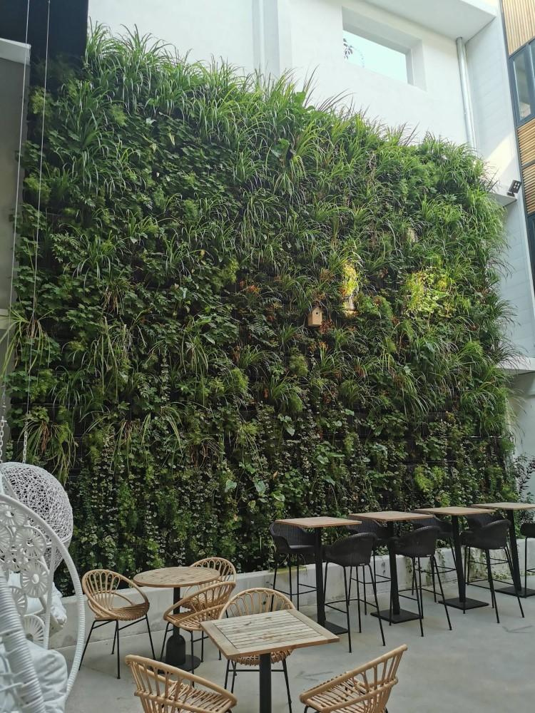 mur végétalisé
